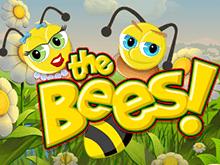 The Bees – азартная онлайн игра на сайте в интернете